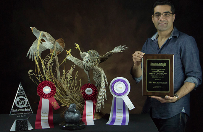 First Place - National Taxidermy Competition