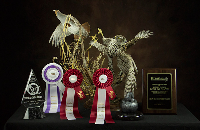 Best of Class - National Taxidermy Competition